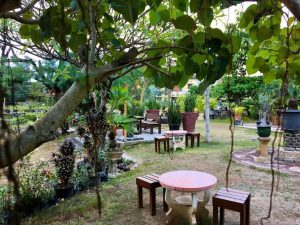 Orange Cafe, tempat ngopi favorit di Surabaya
