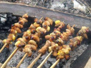 Ulat Sagu, Carimakanaja.com (Sumber: idntimes.com)